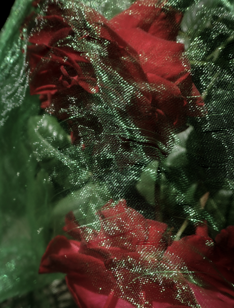 A red rose with a green fabric overlaid